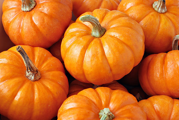 11 Choir Halloween Tricks (and Treats)